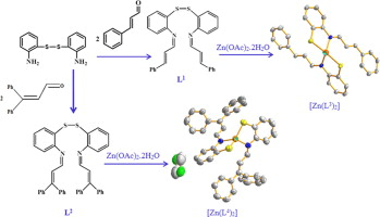 Zn(II) complexes with N2S2 Schiff base ligands